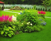полив газон озеленнение ( Полив Мастер) растения